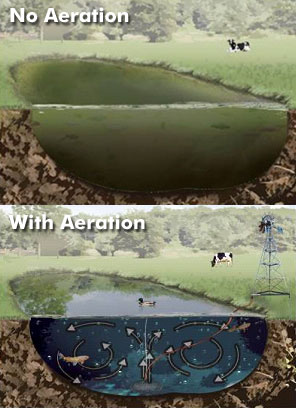 with and without aeration comparison image